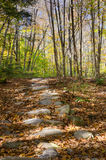 Catskills Path. Dappled sunlight falls on a native stone path leading through Autumn woods in the Catskills Stock Images