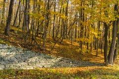 Catskills stenvägg arkivfoto