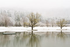 Catskills vinter Lake Arkivfoto