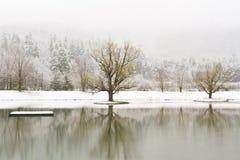 Catskills Winter湖 库存照片
