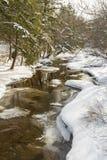 Catskills Winter Stream Reflections Stock Photo