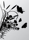 Cattail and butterflies silhouettes Stock Photo