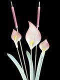 cattails γυαλί lillies Στοκ Φωτογραφίες