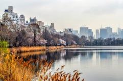 Cattails und Frühlings-Blüten zeichnen das Reservoir im Central Park lizenzfreies stockfoto