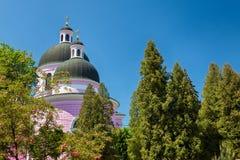 Cattedrale avvolta in alberi verdi Fotografie Stock