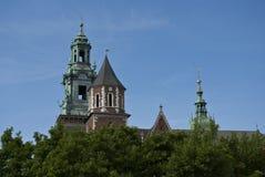 Cattedrale del castello di Wawel Immagini Stock