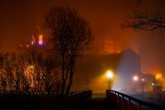 Cattedrale del Galway che sparisce nella nebbia di inverno di notte Fotografia Stock