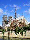 Cattedrale del Notre Dame Immagine Stock