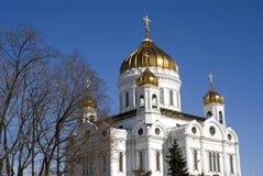 Cattedrale del redentore di Cristo a Mosca Tronchi di albero neri di primavera senza foglie Immagini Stock