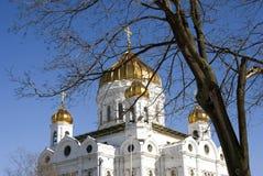 Cattedrale del redentore di Cristo a Mosca Tronchi di albero neri di primavera senza foglie Fotografia Stock Libera da Diritti