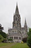 Cattedrale del sughero Fotografie Stock Libere da Diritti