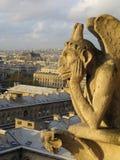 Cattedrale della madre parigina del dio Fotografia Stock