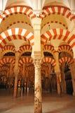 Cattedrale della moschea di Cordova, Andalusia, Spagna Immagine Stock Libera da Diritti
