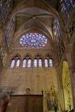 Cattedrale della Santa Maria de Leon. La Spagna Fotografia Stock
