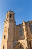 Cattedrale della Santa Maria Gerona, Costa Brava, Catalogna, Spagna Immagini Stock Libere da Diritti