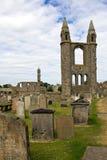 Cattedrale della Scozia, St Andrews Fotografia Stock Libera da Diritti