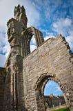 Cattedrale della st Andrews Fotografia Stock
