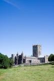Cattedrale della st David Fotografie Stock
