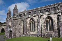 Cattedrale della st Davids Immagine Stock Libera da Diritti