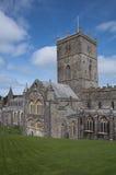 Cattedrale della st Davids Immagine Stock