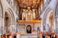 Cattedrale della st Davids, Galles, Regno Unito Fotografie Stock Libere da Diritti