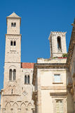 Cattedrale della st Maria Assunta Giovinazzo La Puglia L'Italia Fotografia Stock
