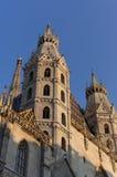 Cattedrale della st Stephen Fotografie Stock