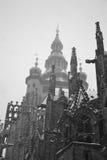 Cattedrale della st Vitus all'inverno Immagine Stock Libera da Diritti