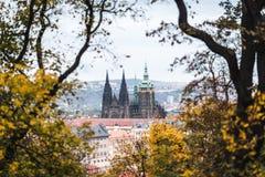 Cattedrale della st Vitus a Praga, Repubblica ceca Fotografie Stock