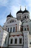 Cattedrale di Aleaxander Nevsky, Tallinn Fotografia Stock Libera da Diritti