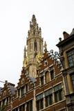 Cattedrale di Anversa Fotografia Stock