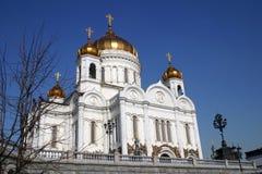 Cattedrale di Christ il salvatore Fotografia Stock
