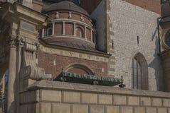 Cattedrale di Cracovia Wawel Immagini Stock Libere da Diritti