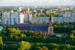 Cattedrale di Kenigsberg Kaliningrad Fotografia Stock Libera da Diritti