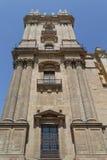 Cattedrale di Malaga Fotografia Stock
