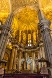 Cattedrale di Malaga, in AndalucÃa, la Spagna Fotografia Stock Libera da Diritti