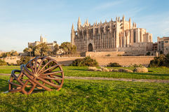 Cattedrale di Mallorca Immagine Stock Libera da Diritti