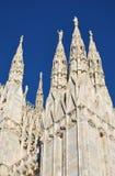Cattedrale di Milano Fotografia Stock Libera da Diritti
