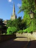 Cattedrale di Norwich Fotografia Stock Libera da Diritti