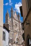 Cattedrale di Orvieto. L'Umbria. L'Italia. Immagine Stock Libera da Diritti