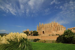 Cattedrale di Palma immagine stock libera da diritti