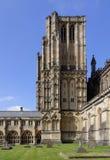 Cattedrale di pozzi, Somerset Fotografia Stock Libera da Diritti