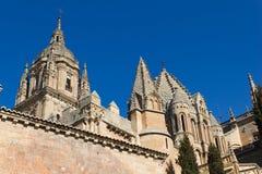 Cattedrale di Salamanca Fotografia Stock