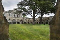 Cattedrale di Salisbury, cattedrale anglicana a Salisbury, Inghilterra immagini stock libere da diritti