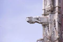 Cattedrale di Siena dei doccioni Fotografia Stock