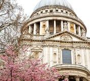 cattedrale di St Paul nella vecchi costruzione e religio di Londra Inghilterra fotografie stock libere da diritti
