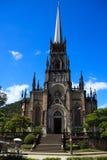 Cattedrale di St Peter di Alcântara in Petrópolis, Brasile immagine stock libera da diritti