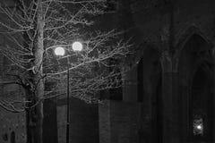 Cattedrale di Tartu alla notte I immagini stock libere da diritti