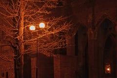 Cattedrale di Tartu a colori immagine stock