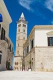 Cattedrale di Trani La Puglia L'Italia Immagine Stock